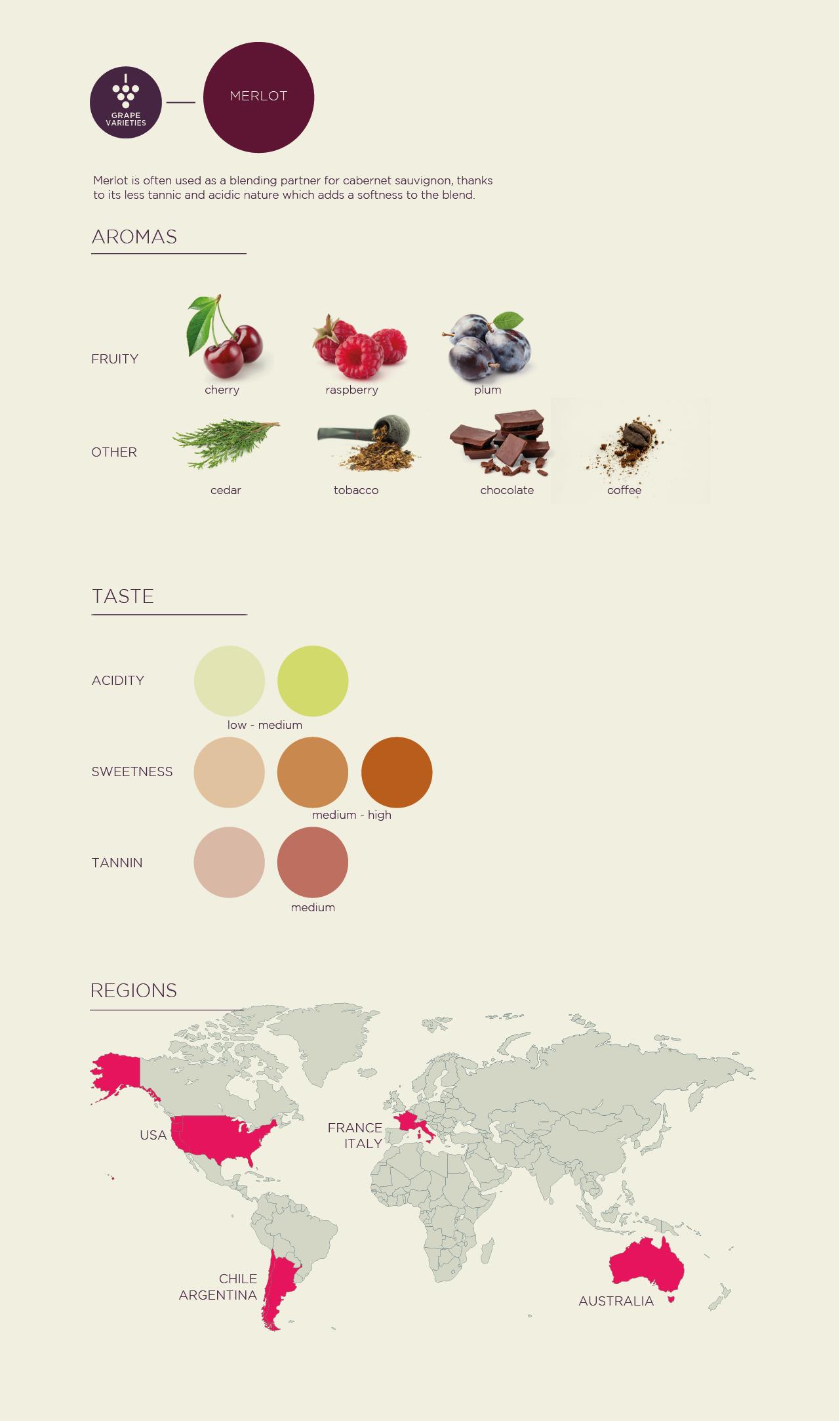 Merlot grape variety